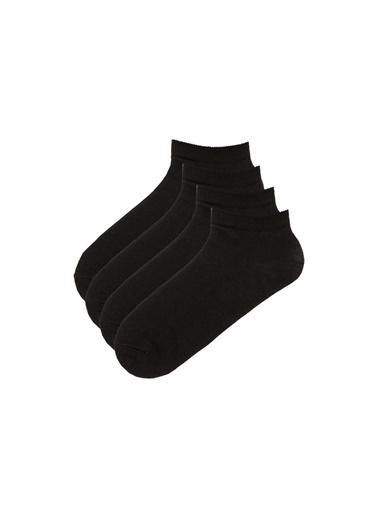 Penti Kadın Siyah Basic 4 Lü Patik Çorap Seti PHPT4BSC17SK Siyah